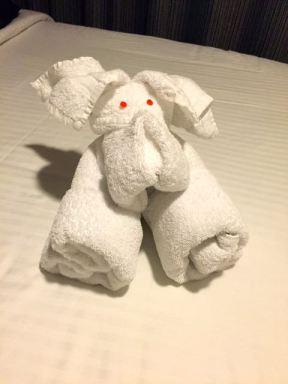 Diese Handtuch-Ueberraschungen am Abend liebe ich!