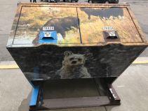 die bärensicheren Abfalleimer sind schon sehenswert
