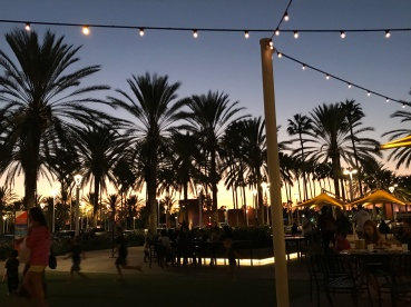 Samstag - Abendessen unter Palmen